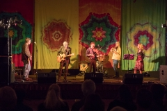 2017 Irish Music Festival Small Files-1339