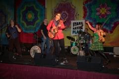 2017 Irish Music Festival Small Files-961